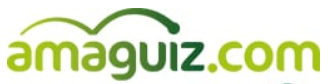 Amaguiz Coupons & Promo Codes